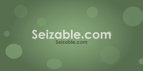 Seizable.com