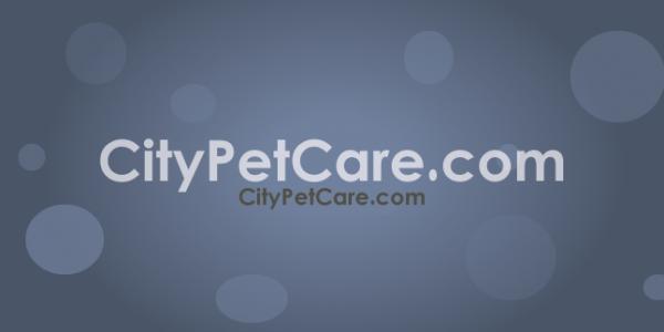 CityPetCare.com